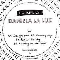DANIELA LA LUZ - Did You Ever : 12inch
