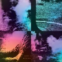 LUKE ABBOTT - Wysing Forest (180g/LP+MP3) : BORDER COMMUNITY (UK)