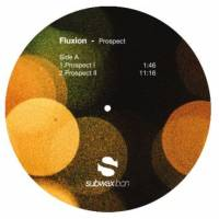 FLUXION - Prospect : 12inch