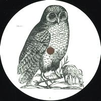 UNKNOWN ARTIST - Owl : OWL (GER)