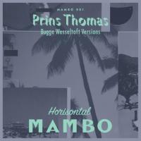PRINS THOMAS - Bobletekno - Bugge Wesseltoft Versions : HORISONTAL MAMBO (NOR)