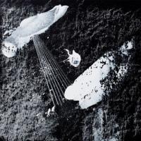 COSMIN TRG - Oblic / Serpenti : 12inch