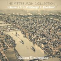 WILLIAM FITZSIMMONS - The Pittsburgh Collection : LP