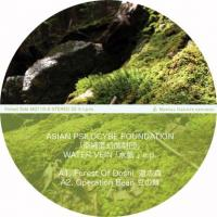 ASIAN PSILOCYBE FOUNDATION - Water Vein E.P - Dj Yogurt & Moja Remix : 12inch