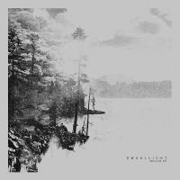DWAALLICHT - Welkin EP : 12inch