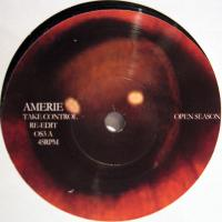 AMERIE / TOM ZE - Take Control : 7inch