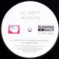 DJ JNETT - Wildlife (Maurice Fulton Remix) : 12inch