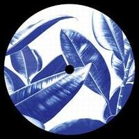ACASUAL - Spring Theory Reworks : 12inch