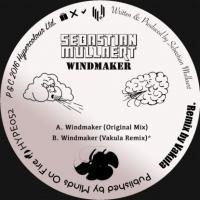 SEBASTIAN MULLAERT - Windmaker, Vakula Rmx : 12inch