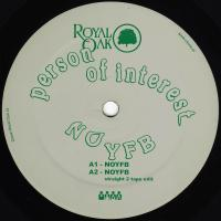 PERSON OF INTEREST - NOYFB : 12inch