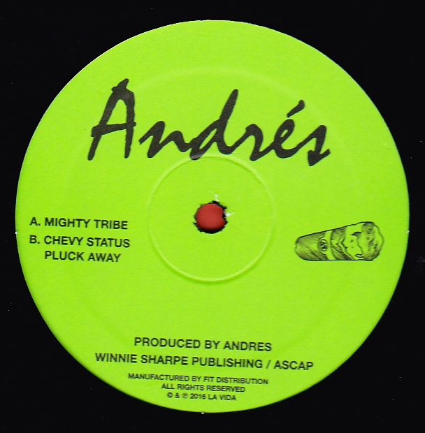 andres mighty tribe 12inch newtone records