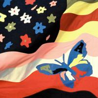 THE AVALANCHES - Wildflower : XL (UK)