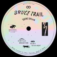 BRUCE TRAIL - Ravine Dream : MAGIC WIRE (UK)