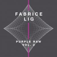 FABRICE LIG - Purple Raw, Vol. 2 : SYSTEMATIC (GER)