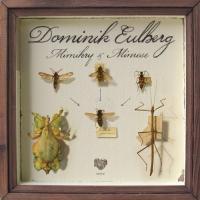 DOMINIK EULBERG - Mimikry & Mimese EP : 12inch