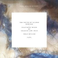 WOLF MULLER & CASS. - The Sound Of Glades Remixes : 12inch
