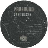 VARIOUS - Profound Synthesis : 12inch