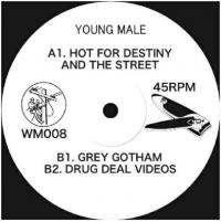 YOUNG MALE - Hot For Destiny And The Street : 12inch