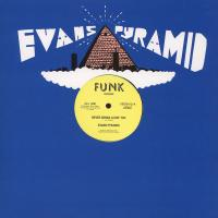 EVANS PYRAMID - Never Gonna Leave You : 12inch