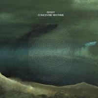 DJ GUY - Concentric Rhythms : 2LP