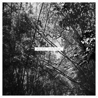 ANDREW PEKLER - Tristes Tropiques : LP