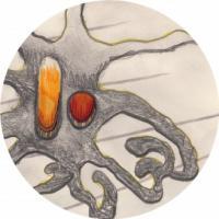 JOHN TEJADA & ARIAN LEVISTE - Hysteresis : AREAL (GER)