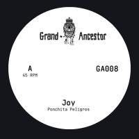 PONCHITA PELIGROS / HELGELAND 8BIT SQUAD - Joy : 7inch