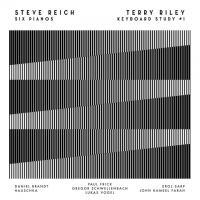 HAUSCHKA, EROL SARP(GRANDBROTHERS), DANIEL BRANDT, etc - Steve Reich -Six Pianos / Terry Rilley - Keyboard Study #1 : LP