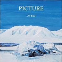 王舟 - Picture LP : felicity (JPN)