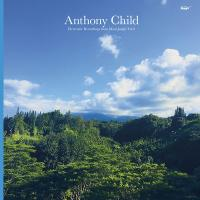 ANTHONY CHILD - Electronic Recordings From Maui Jungle. Vol. 2 : EDITIONS MEGO (AUS)