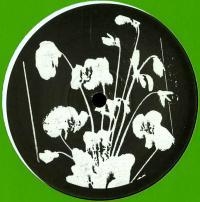 ALPHONSE - Forgotten Memories EP : 12inch