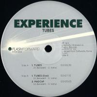 THE EXPERIENCE - Tubes : FLASH FORWARD (ITA)