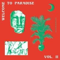 VARIOUS - Welcome To Paradise (Italian Dream House 89-93) - VOL.2 : 2LP