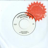 VARIOUS ARTISTS - Take You Back / Don't Be Afraid : 7inch