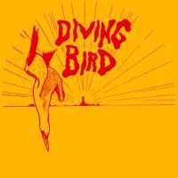 ANDY MAC - Diving Bird 1 : 12inch