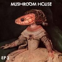 VARIOUS - Mushroom House Ep 3 : 12inch
