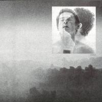EDWARD - Shufflehead : 12inch