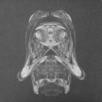 PARADON'T - Thrd Mpct EP : DISK (GER)