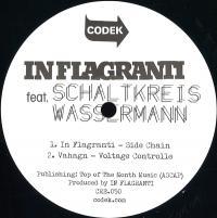 IN FLAGRANTI feat. SCHALTKREIS WASSERMAN - Sample & Hold EP : 12inch