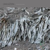 UNICAZURN - Transpandorem : LP