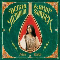 DERYA YILDIRIM & GRUP SIMSEK - Nem Kaldi : 12inch
