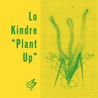 LO KINDRE - Plant Up : OPTIMO MUSIC (UK)