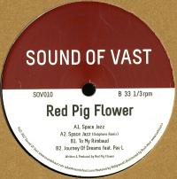 RED PIG FLOWER - SPACE JAZZ : SOUND OF VAST (HOL)