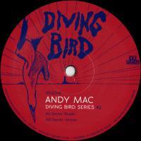 ANDY MAC - Diving Bird 2 : 12inch