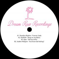 VARIOUS ARTISTS - DRR006 : 12inch