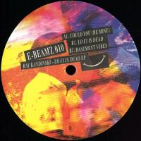 RAY KANDINSKI - Lo Fi Is Dead EP : 12inch