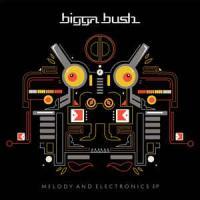 BIGGABUSH - Melody & Electronics EP : JAHMONI (GER)