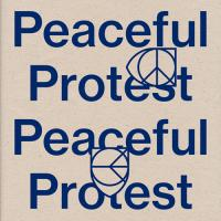 VARIOUS - Peaceful Protest : RVNG INTL. (US)