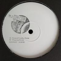SHIELD, ROBYTEK, SAL P & DENNIS YOUNG (FROM LIQUID LIQUID) - Now (Paranoid London & Playgroup Remixes) : REBIRTH (ITA)