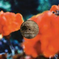 CARMEN VILLIAN - Planetarium (Gigi Masin Remix) : 12inch